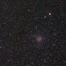 Caroline's Rose - NGC 7789,                                AC1000