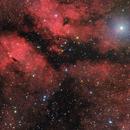 IC 1318 HaLRGB - Deep Sky West,                                Deep Sky West (Lloyd)
