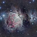 Orion Nebula,                                Martin Mutti