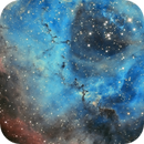 Dust clouds in Rosette Nebula,                                Piet Vanneste