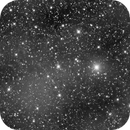Cow Nebula (IFN) Mandel-Wilson Catalogue of Unexplored Nebulae #7,                                jerryyyyy