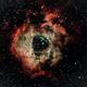 NGC 2244 Rosette Nebula,                                George C. Lutch