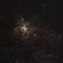 Tarantula Nebula, another go,                                David Williams