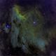 Pelican Nebula IC-5070 HaSHO  (25-27 August 2019),                                Pam Whitfield