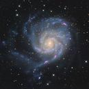 M101 Pinwheel Galaxy,                                physics5mickey