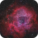 NGC 2283,                                Michael Wolter