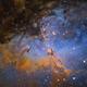 Pillars of creation -inside  M16  Eagle nebula,                                Arnaud Peel