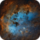 The Tadpole Nebula (IC410),                                Luca Marinelli