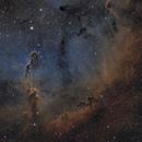 Elephant Trunk Nebula in SHO,                                Steve Milne