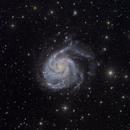 M101 - Whirlpool Galaxy,                                Elvie1