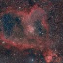 Heart Nebula,                                Albert van Duin