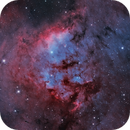 Cederblad214-NGC7822 (100h Epsilon) Bicolor,                                Florian_Pieper