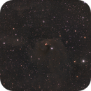NGC 1555 - Hind's Variable Nebula,                                Kurt Zeppetello