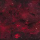 Barnard 174 and Surrounding Area,                                John Travis