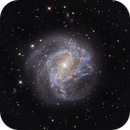 M83 - The Southern Pinwheel Galaxy,                                Juan Filas