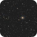 NGC 7217,                                Carles Zerbst