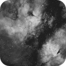 Butterfly IC1318 in H-alpha,                                Lars Stephan