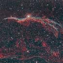 NGC 6960, Western Veil Nebula,                                Aleksander Sørensen
