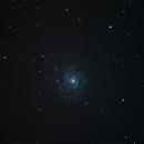 M101,                                Slim