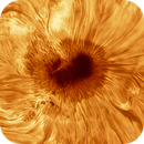 The Sun - Sunspot in AR2786,                                Jason Guenzel