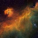 IC 2177 - Nebulosa de la Gaviota,                                Rodrigo González Valderrama