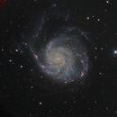 Pinwheel Galaxy,                                Samuel