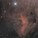 NGC7000 moasic in progress,                                gotak