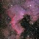 NGC 7000 - Nordamerikanebel,                                Felix
