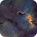Elephant Trunk Nebula,                                Dick Newell
