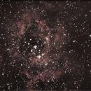 NGC2239,                                Igor Fulvi