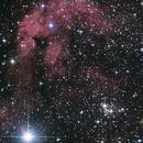 IC1318 near Sadr,                                seigell