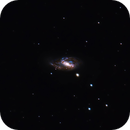 M66 (NGC 3627),                                Lucas Maguire