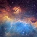 IC2177 - Seagull nebula,                                Caroline Berger