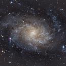 M33 - Triangulum Galaxy,                                Steve Ludwig