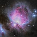 M42 - Orion Nebula,                                Darius Kopriva