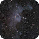 IC 2118 - the Witch Head Nebula,                                Ed Magowan