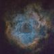Rosette Nebula - SHO - NGC2244, NGC2239,                                Roberto Botero