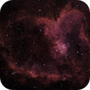IC1805 in red,                                wrnchhead