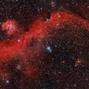 IC 2177 Nebulosa de la Gaviota,                                Ernesto Arredondo