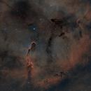 IC1396,                                SkyEyE Observatory
