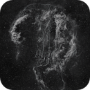 Curly Veil Nebula Complex,                                pete_xl