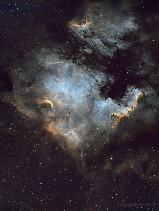 NGC 7000, The North America Nebula,                                Wade Prunty