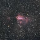 Swan & Asteroid 1216 Askania,                                BOB