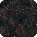 LBN 483, Two Reflection Nebulae,                                Alan Brunelle