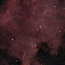 North America Nebula,                                Tony