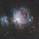 M42, The Great Orion Nebula,                                doug0013
