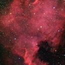 NGC7000, North American nebula (HaRGB),                                Mike Carroll
