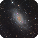NGC2403 LRGB,                                Albert van Duin
