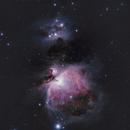 M42,                                Firas Haki