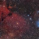 IC 2169 Dreyer's Nebula (IC446/447),                                Bernhard Zimmermann